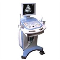 Ultrasound Scanner US2216
