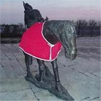horse blanket!