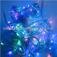 LED Christmas Light (21d)