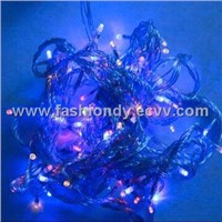 LED Christmas Light (23b)