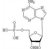 adenylic acid