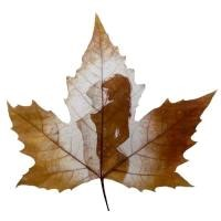 crafts leaf carving artwork carving