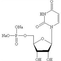 uridine monophosphate disodium