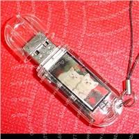 china solar USB Memory,usb disk 8gb,2gb usb pocket drive,usb storage,thumb drive
