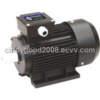 Y2 electrical motor