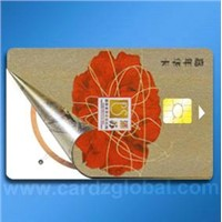 dual interface card
