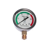 Oil-Filled Pressure Gauges (YF60)