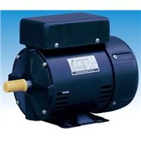 Electric Motor - CSCR Series