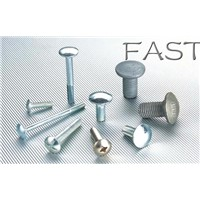 Carriage Bolts Series
