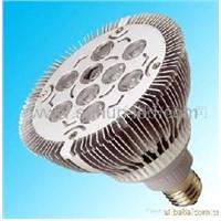 LED Spot Light (PAR38)