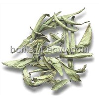 Stevia Dry Leaves Available