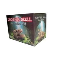 Educational Toy - Dinosaur Head (G6307)