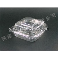 Hamburger Plastic Container (N-248)