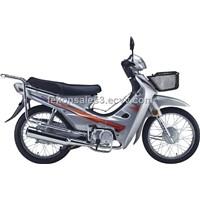 CUB Bike FK110-1