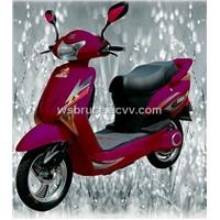 Electric Scooter (Zstdr10z)