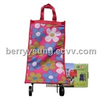 Foldable Shopping Trolley / Shopping Bag