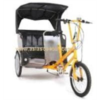 Electric Pedicab Rickshaw (VS-T301E)