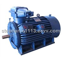High Voltage Explosion Proof Three Phase Induction Motor