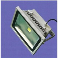 LED Flood Light (CM-290FL50-240V)