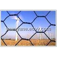 PVC/Galvanized Hexagonal Wire Mesh