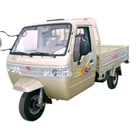 Tricycles (XF800)