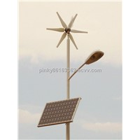 Solar Street Light (SS-001)
