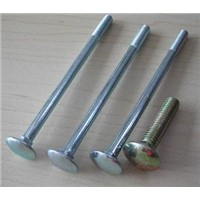 Carriage Bolt (DIN603)