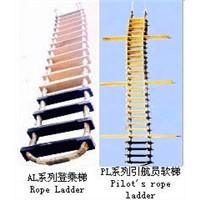 Embarkation ladder|Pilot's ladder