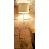 Metal Floor Lamp (LJ-50018A)
