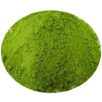 Tea Polyphenols