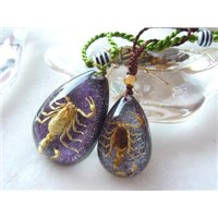 Real Insect Jewelry