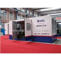 CNG Compressor[VFD-0.32(30-200)-250]