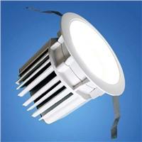 LED Down Light ((ACM5011)