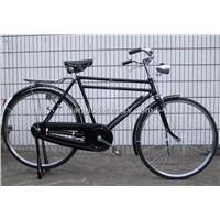 Heavy Duty Bike