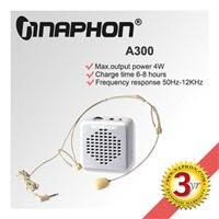 Mini amplifier A300