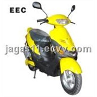 Electric Scooter (TDX26Z)