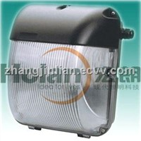 Lvd induction electrodeless fluoresent lamp for walk pack