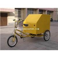 Cargo Trike (VS-T303)