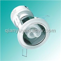 Downlight/lamp/light/bulb