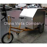 Electric Cargo Trike (VS -T303EB)