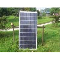 Poly 100W Solar Panel
