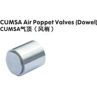 CUMSA Air Poppet Valve