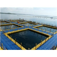 mariculture,aquatic farm,fish farm