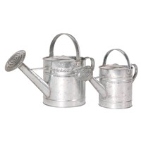 metal watering can watering pot