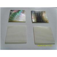 shell blanks/shell slices