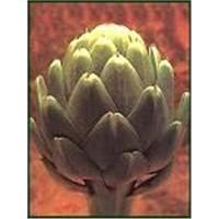 Artichoke Leaf P.E lindayy1007@hotmail.com