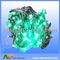 Christmas Light Ad - Christmasl - Green