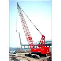 Fuwa Crawler Crane (QUY150A)