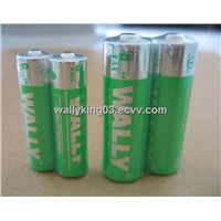 AA Alkaline Battery (LR6)