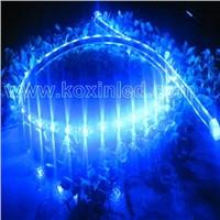 Flexible led ribbon light/ led strip light/SMD flexible strips